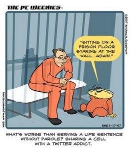 twitter-addicts