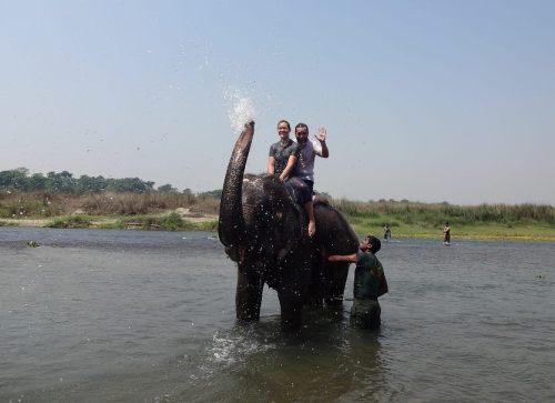 elephantbath